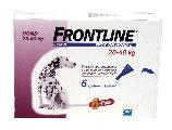 Frontline dog spot on large 20-40 kg 6 pip
